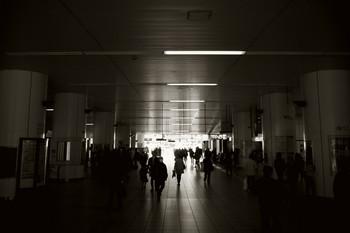 20110407_01.jpg