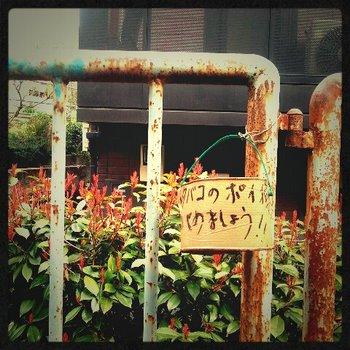 20120322_01.jpg